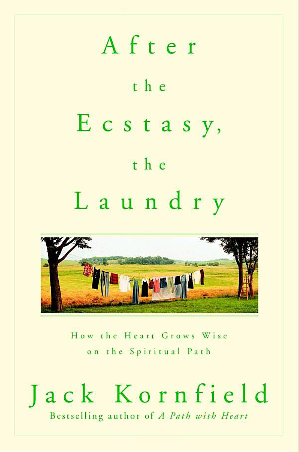 After The Ecstasy The Laundry Cover